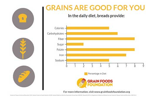 Grains are Good for Your Daily Diet Infographic
